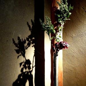 【定期花】お客様をお迎えする玄関花。