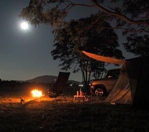 夜の森でテント泊するつもりなんやが・・