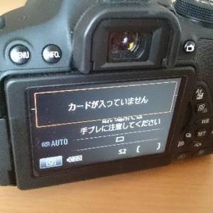Page484 17回目のテント泊キャンプ ~失敗その①カメラにSDカード入れ忘れ注意報~
