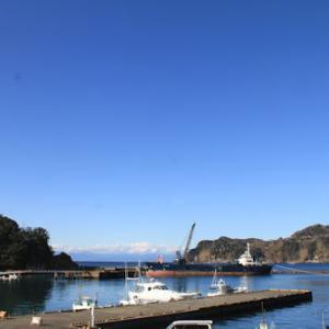 1月29日の宇久須港
