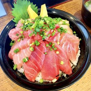 丼:【旅グルメ静岡】マグロ尽くしの海鮮丼を堪能できるお店!行列必死の人気店|清水港 みなみ