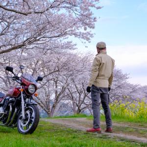 CB1100 2年ぶりの桜に会いに・・・  福岡お花見ツーリング その①