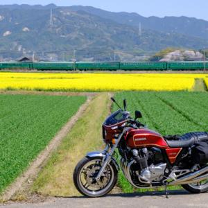 CB1100 菜の花畑とローカル線  福岡お花見ツーリング その④