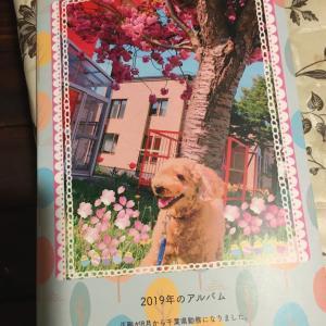 千歳安田ピアノ教室 2019年のフォトブック