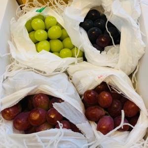 葡萄と休日のヲタ活