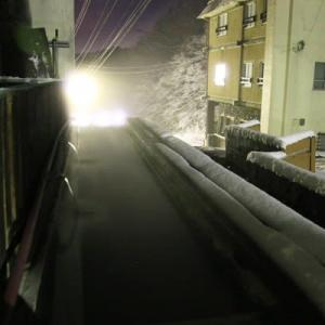 温泉に初雪