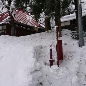 雪たくさん