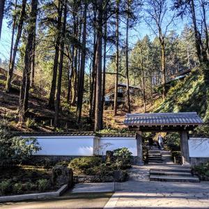 こんなところに日本庭園