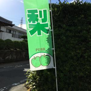 三島のとっても美味しいお土産(o^^o)