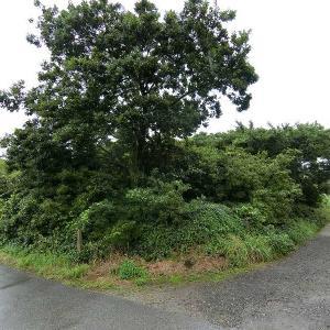 千葉県富津市 海まで約1.4kmの面積905㎡の土地の価格は…