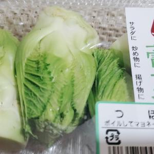 蕾(つぼみ)菜
