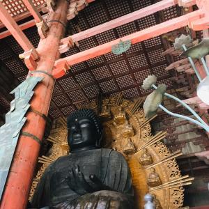 国民半分の協力でできた奈良の大仏さま。