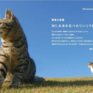 「殺処分寸前に保護されたワンニャン写真展を開催~大阪市」