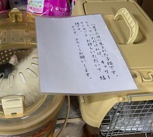 「たった紙切れ1枚の命~宮崎県」