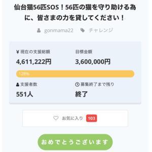 『仙台猫56匹SOS』必要物資のご支援のお願い