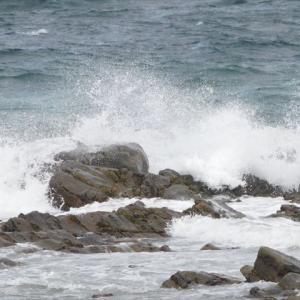 海に出られなくても、心は広い海にーっ(^^♪