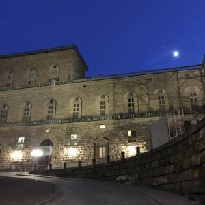 ピッティ宮殿にてイタリアに戻って来た静物画を観る