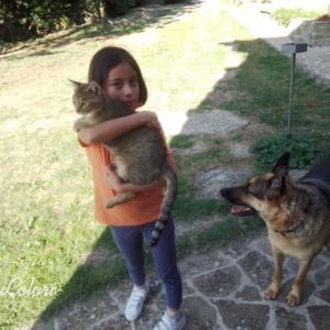 次女、愛猫ルイの故郷にて兄弟に会う