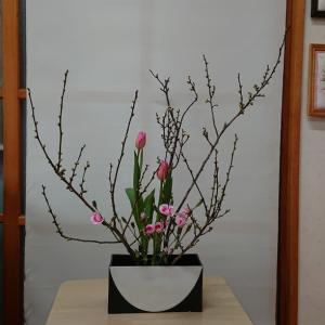 今月のいけ花