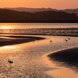 糸島サンセット 干潟の夕景 その1