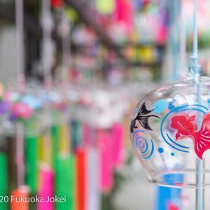 清涼を求めて! 田川市三井寺 風鈴のある景色
