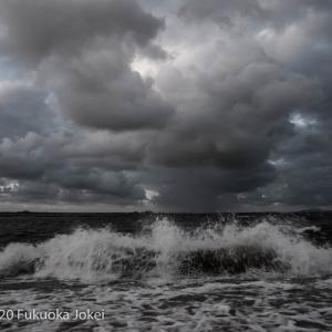 百道浜 嵐の日の撮影