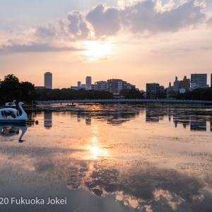 福岡情景 大濠公園 秋の夕景