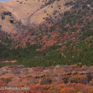 久住高原の紅葉 2020 その他の写真