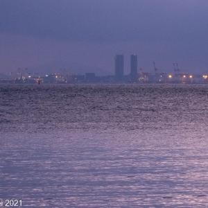 博多湾情景 百道浜朝景 2021年5月