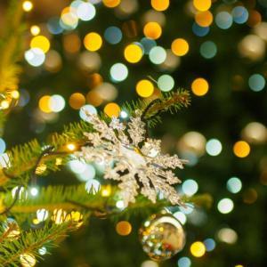 12月 これから、イルミネーションが素敵です!婚活、するかしないかで、この冬どうすごす?