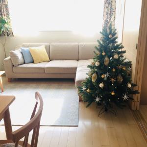 クリスマスツリーを飾りました!