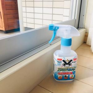 【大掃除】窓掃除、ダイソーの気になるアレ使ってみました。