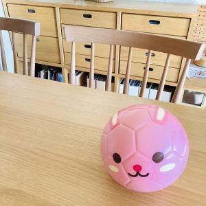 【ダイソー】うさぎのボール、娘の意外な遊び方^^