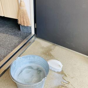 久しぶりに玄関とポーチを掃除してスッキリ!