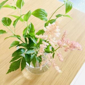 リビングにふわふわ可愛いアスチルドの花を飾ってみました。