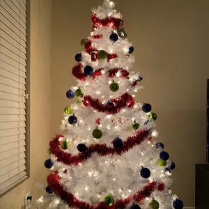 今年もクリスマスがあっという間に過ぎました〜