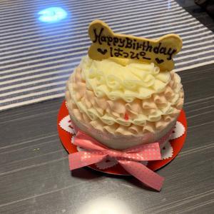 お誕生日ケーキ〜ワンコ用