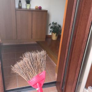 【さっき写真貼り忘れました】玄関を(ほぼ)毎日掃き掃除する方法