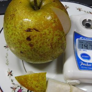 我が家の梨は美味しかった