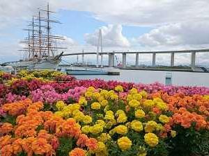 今年の『富山マラソン』は11月7日。そして、『金沢』は前週の10月31日。仲良くやってね! お願いします。