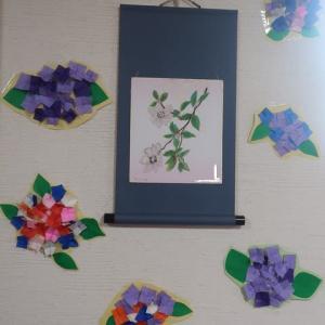 紫陽花が咲きました🌼