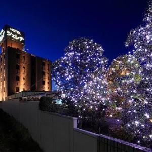 ホテルシェレナ国立からHOTEL CHERENA(ホテルシェレナ国立)に変更致しました!