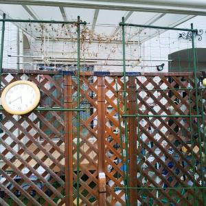 ◆庭のフェンス交換◆