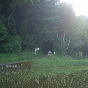 高祖父・名越左源太泰藏の命日に、皇徳寺跡へ再び