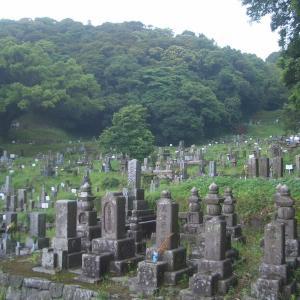 興国寺墓地を再訪(2018. 5.18)