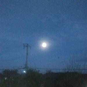 〝冬の月〟と〝寒月〟と〝寒の月〟