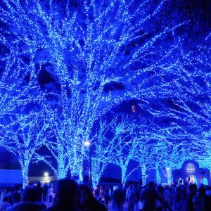 渋谷の「青の洞窟」にいってきたので合わせて見たい建築と共に紹介!【東京】