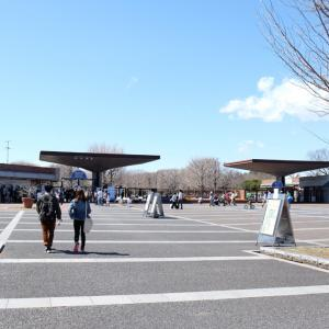 昭和記念公園は建築作品のテーマパーク!その知られざる魅力を徹底解説【東京立川】