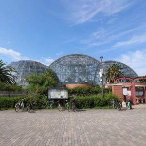 夢の島熱帯植物園がスゴい!新木場の隠れた名建築を徹底レポート【東京新木場】