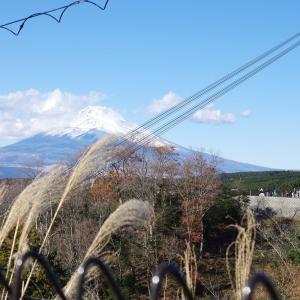 富士三景 標高・海抜